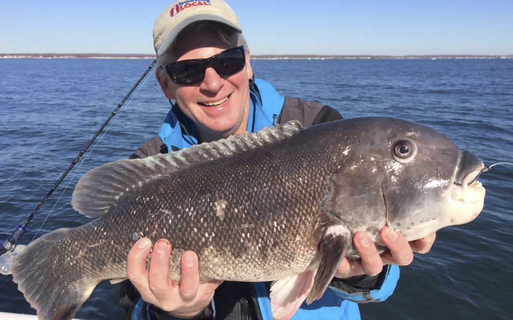 Fall-Tautog-Photo-Courtesy-of-New-England-Boating